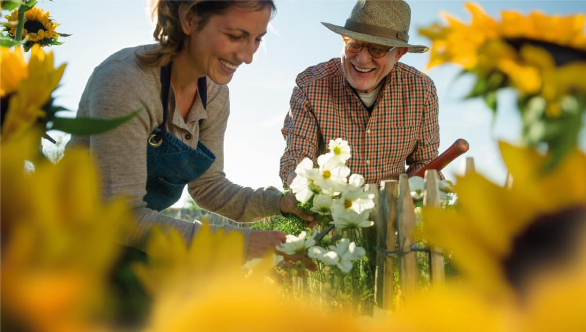 Frau und Mann arbeiten im Garten mit Sonnenblumen